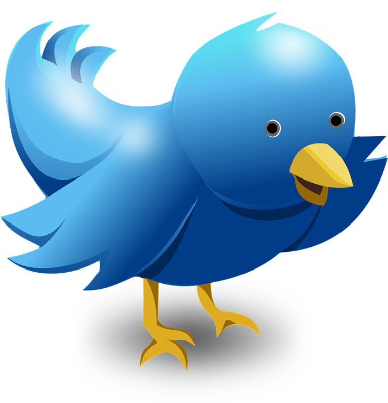 The iconic Larry Bird logo of Twitter, the world's largest microblogging site.