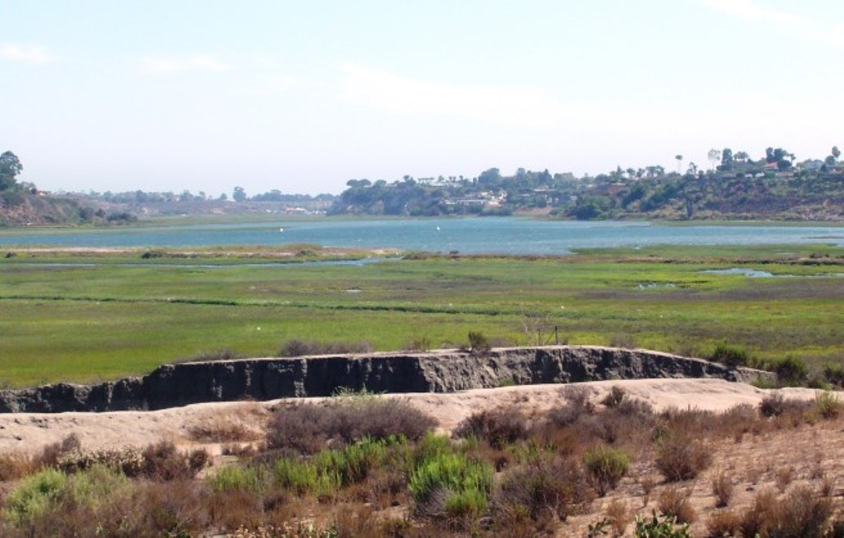 A view of the swamplands in the Newport Beach, California, Back Bay from the roof of the Muth Interpretative Center.